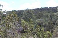 Home for sale: 24 Lost Valley Loop, Cedar Crest, NM 87008