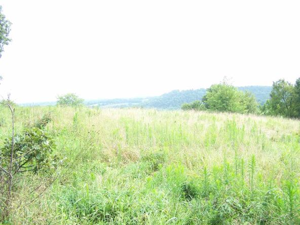2000 Cedar Park Rd., Viola, AR 72583 Photo 3