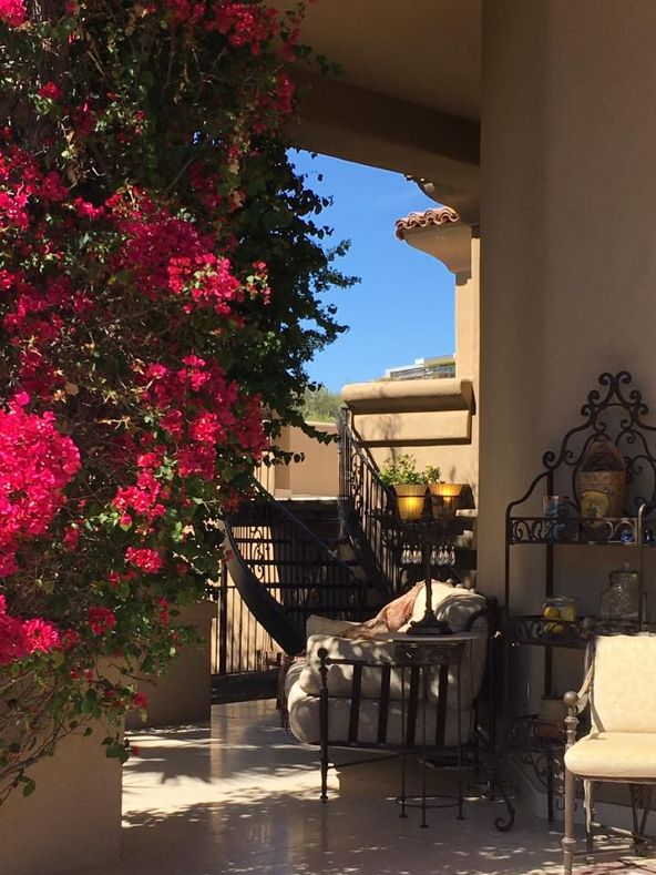 4138 E. McDonald Drive, Paradise Valley, AZ 85253 Photo 10