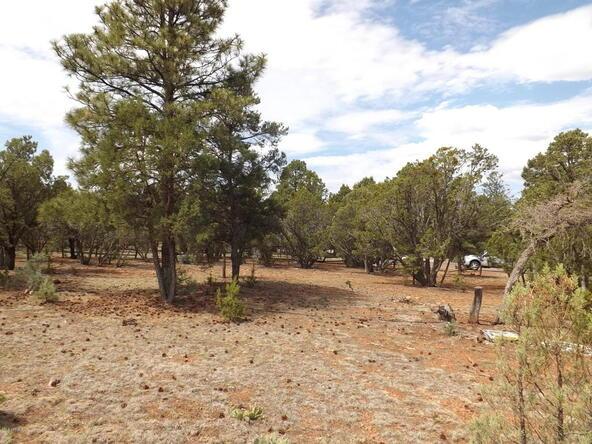 2374 Wildcat Cir., Overgaard, AZ 85933 Photo 7
