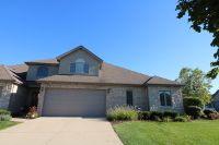 Home for sale: 16163 Alissa Ct., Homer Glen, IL 60491