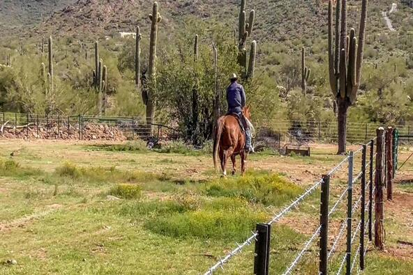 2726 E. Saddle Mountain Rd., Cave Creek, AZ 85331 Photo 38