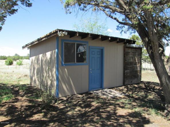 1593 Cr 3140, Vernon, AZ 85940 Photo 12