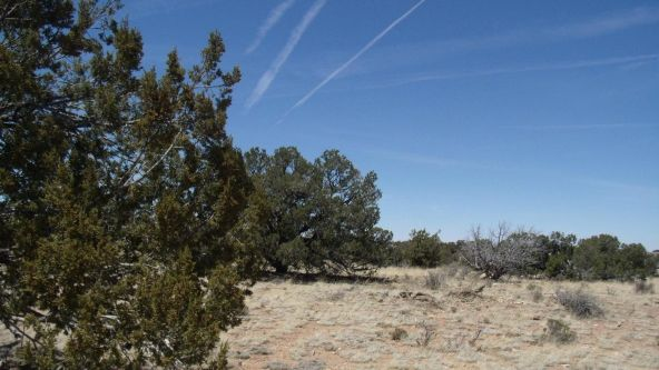 6376 W. Fire Sky Trail, Williams, AZ 86046 Photo 6