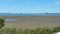 Home for sale: 101 Island Quay Dr., Atlantic Beach, NC 28512
