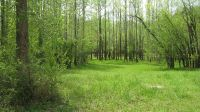 Home for sale: Lot 1 Half Moon Lake, Saltillo, TN 38370