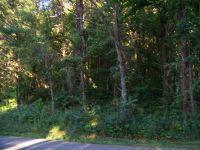 Home for sale: 166 Bat Creek Shores Ln., Vonore, TN 37885
