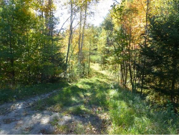 Lot #6 Woodland Dr., North Troy, VT 05859 Photo 2