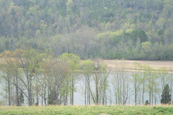 The Preserve At Clinch River, Oak Ridge, TN 37830 Photo 14