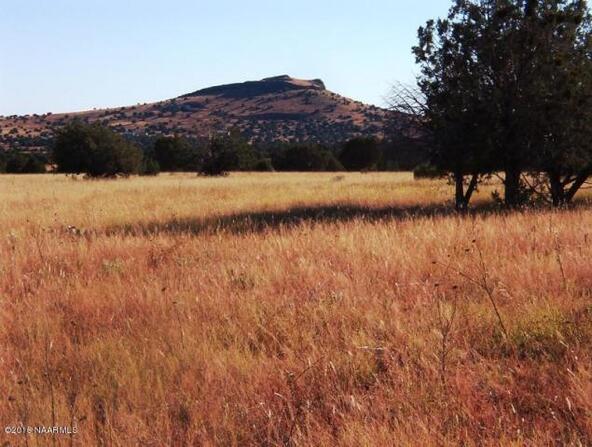 130 Bunny View, Ash Fork, AZ 86320 Photo 4