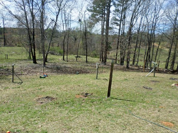 111 Hwy. 49, Russellville, AL 35653 Photo 11