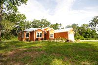 Home for sale: 9049 Dorie Dr., Fanning Springs, FL 32693