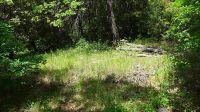 Home for sale: 12.3 Acres Oak Run To Fern Rd., Oak Run, CA 96069