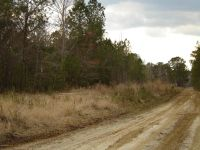 Home for sale: 4 Sawdust Trail S.E., Winnabow, NC 28479