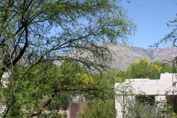 5051 N. Sabino Canyon, Tucson, AZ 85750 Photo 18