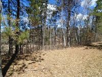 Home for sale: N7621 Bunting Ln., Crivitz, WI 54114
