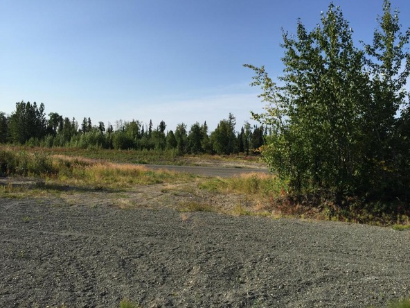 63787 Oil Well Rd., Ninilchik, AK 99639 Photo 26