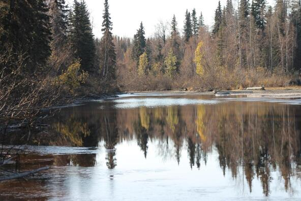14094 E. Iditarod Cir., Willow, AK 99688 Photo 5