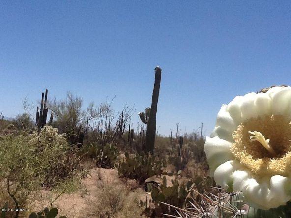 12229 W. Fort Lowell, Tucson, AZ 85743 Photo 9