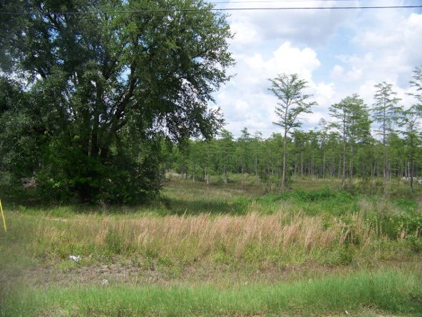 12715 State Hwy. 605, Slocomb, AL 36375 Photo 2