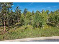 Home for sale: 650 Pembrook Dr., Woodland Park, CO 80863