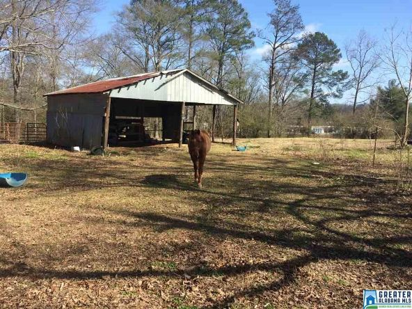 13253 Hwy. 411, Odenville, AL 35120 Photo 7