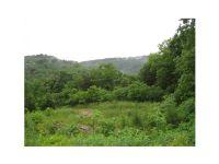 Home for sale: Hwy. 62 East, Eureka Springs, AR 72632
