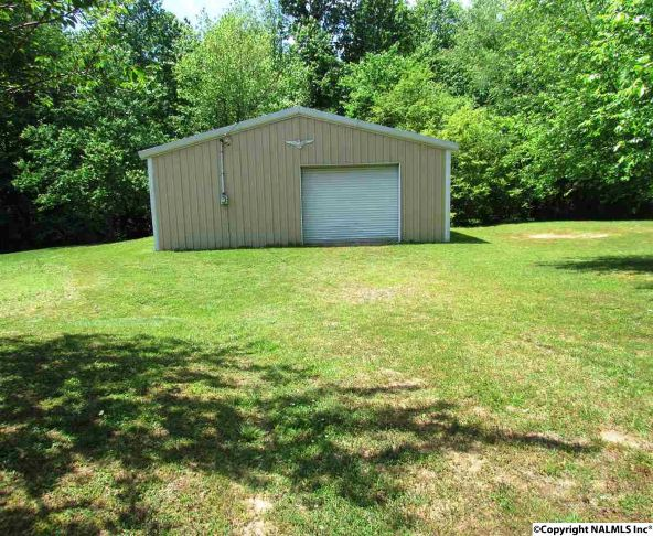 263 County Rd. 49, Section, AL 35771 Photo 17