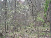 Home for sale: Lot 29 Old Trail, Johnsons Mtn., Huntington, WV 25704