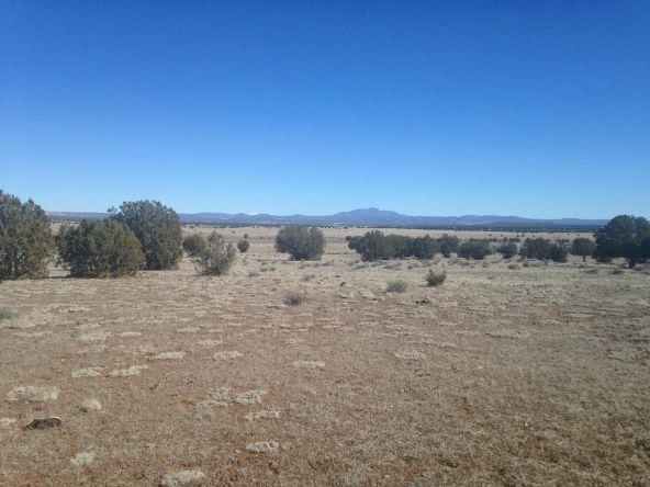 24 Off Of Antelope Run, Ash Fork, AZ 86320 Photo 2