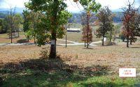 Home for sale: Lt14 Jack Groves Ln., Hayesville, NC 28904