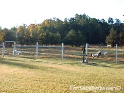 18558 Hwy. 28, Parks, AR 72950 Photo 25