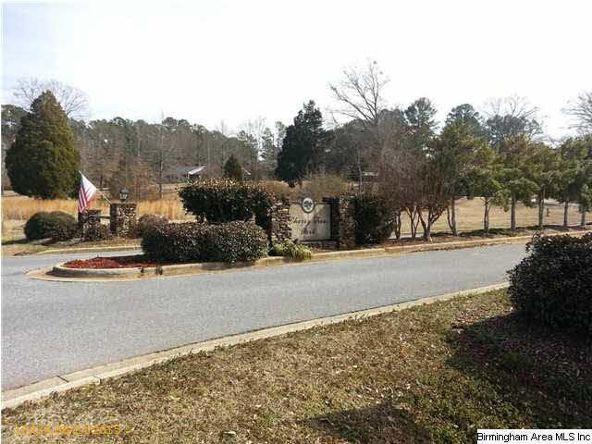 60 Old Roadway, Cropwell, AL 35054 Photo 5