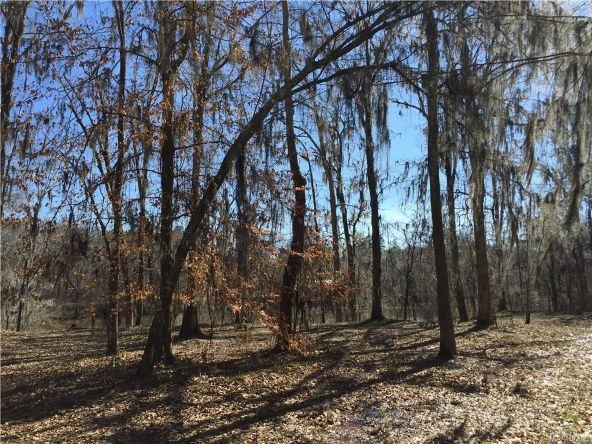 17 Red Eagle Rd., Lowndesboro, AL 36752 Photo 9