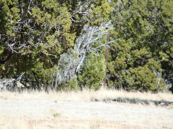 2319 Sitgreaves St., White Mountain Lake, AZ 85912 Photo 14