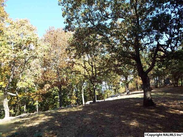 10 S. County Rd. 89, Mentone, AL 35984 Photo 14