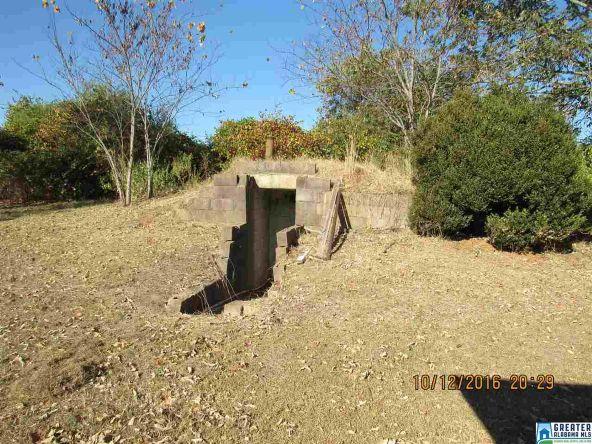 282 Co Rd. 363, Clanton, AL 35045 Photo 19