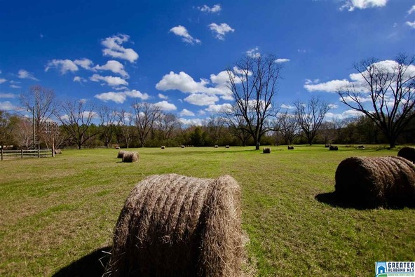 2353 Stallings Rd., Centreville, AL 35042 Photo 30