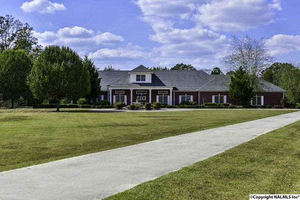 194 County Rd. 380, Decatur, AL 35603 Photo 2