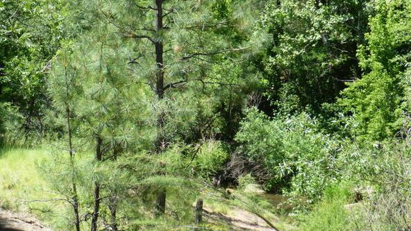 220 W. Zane Grey Cir., Christopher Creek, AZ 85541 Photo 33