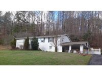 Home for sale: 5417 Powell Valley Rd., Big Stone Gap, VA 24219