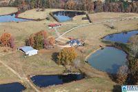 Home for sale: 220 G B Sanders Dr., Ashville, AL 35953