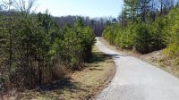 Home for sale: 0-Lot 11 Evergreen Dr., Stanton, KY 40380