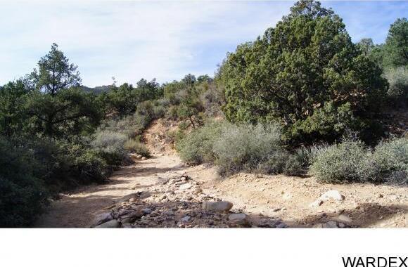9999 N. Trap Springs Rd., Hackberry, AZ 86411 Photo 33
