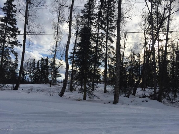 9956 W. Clay-Chapman Rd., Wasilla, AK 99623 Photo 11