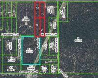 Home for sale: 0 Hexam Tract 13 Rd., Weeki Wachee, FL 34614