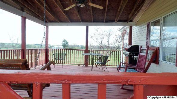 547 County Rd. 550, Grove Oak, AL 35975 Photo 5