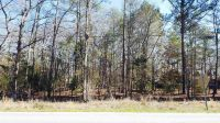 Home for sale: 0 Murray Lindler Rd., Chapin, SC 29036
