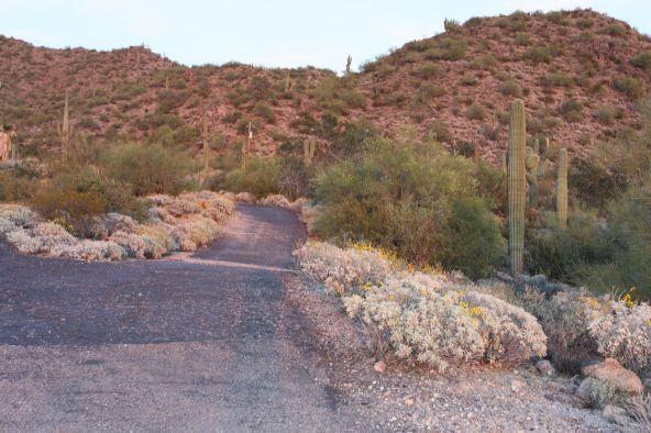3845 N. Hawes Rd., Mesa, AZ 85207 Photo 13