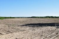 Home for sale: 80 +/- Ac Wayne Lee Rd., Lucedale, MS 39452